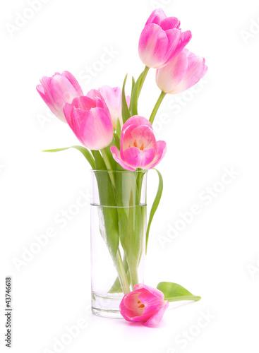 rozowy-tulipanu-bukiet-w-wazie-odizolowywajacej-na-bielu-plecy