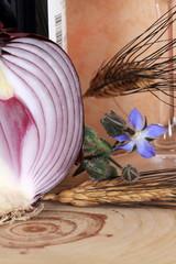 Cipolla rossa e grano