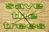 Beautiful texture of tree stump. Earth Day - Save the Trees poster