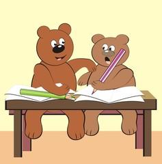 bears - in class