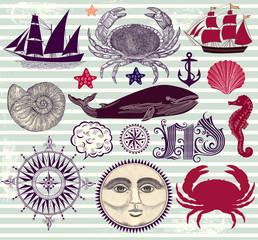 Vector set of marine symbols