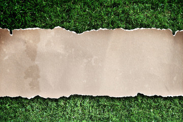 recycled paper on grass.