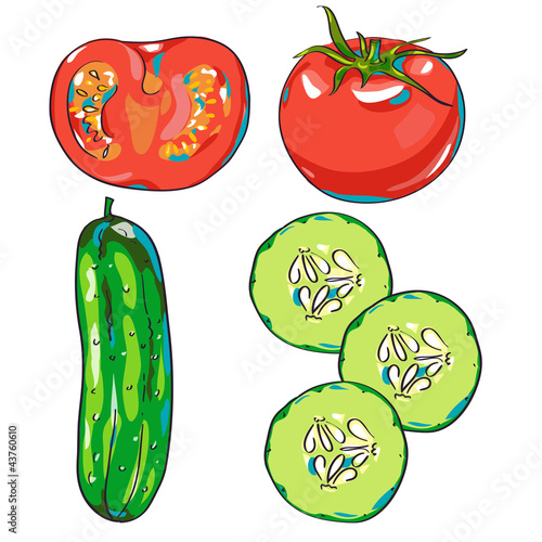 Vector vegetables - tomato and cucumber
