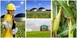 Biogasgewinnung