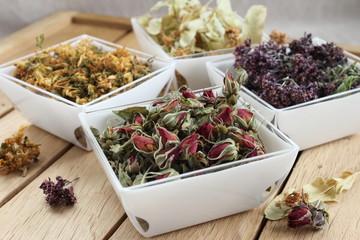 Plantes médicinales pour une médecine douce et  la phytothérapie