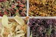 Plantes médicinales pour la médecine douce