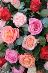 Roses in different shades of pink