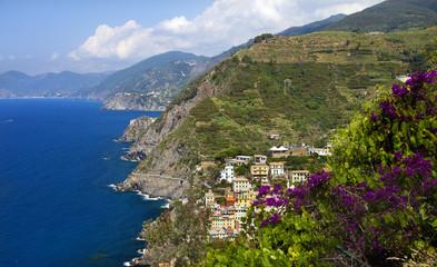 CInque Terre (Liguria,Italia)