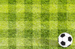 Football soccer on grass background