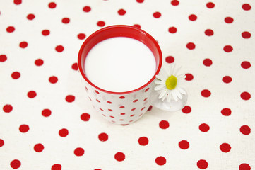 Fresh white milk on a homey red dotted background
