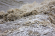 Leinwanddruck Bild - Hochwasser