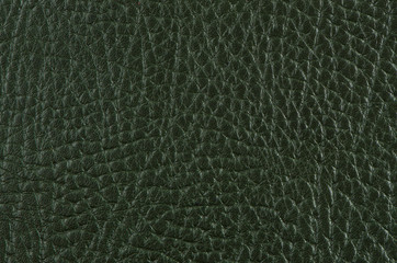 Green leather