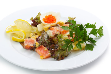 Portion of appetizer salad with salmon and greens isolated
