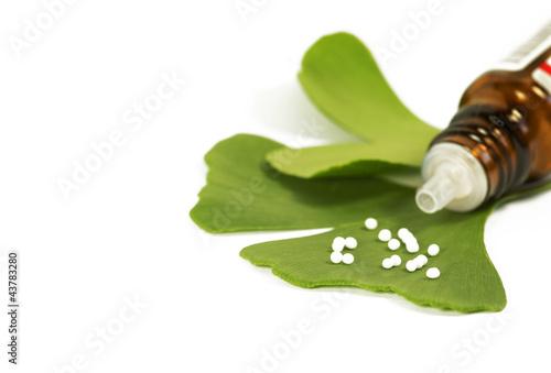 Leinwanddruck Bild Ginkgo mit Globuli