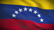Highly detailed flag of Venezuela ripples in the wind. Looped