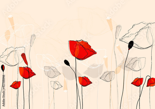 Beautiful summer poppies © Glyph