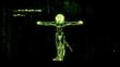This animation is inspired by Leonardo Da Vinci's The Vitruvian