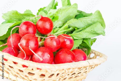 Fresh radishes with tops