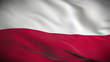 Highly detailed flag of Poland ripples in the wind. Looped