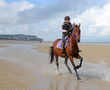 equitation sur la côte d'opale