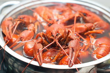 crawfish boiling in a large pot