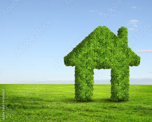 Green grass  house symbol