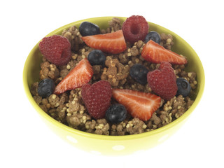 Bowl of Breakfast Cereal with Fruit