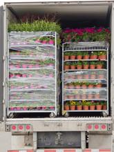 Ouvrir livraison camion chargé avec des plantes en pot palettes