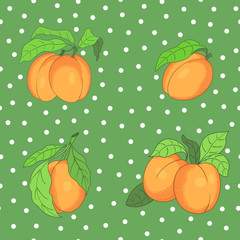 seamless pattern with apricots on the spotted background