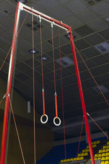 Gymnastic sport rings