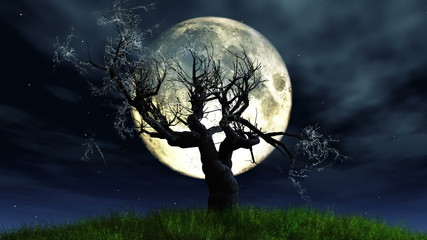 Lonely Tree in Moonlight 3D animation