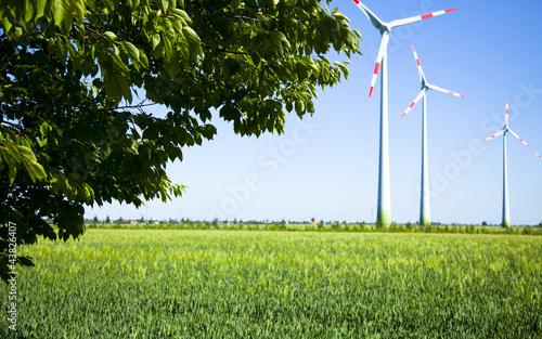 Windräder Energie Natur