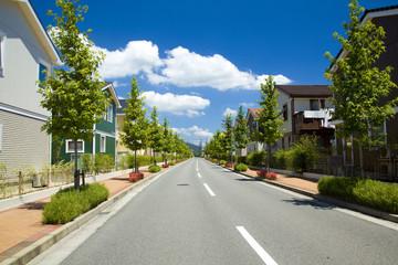住宅街と1本道