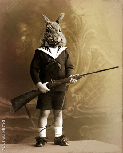 lapin chasseur - 43827603