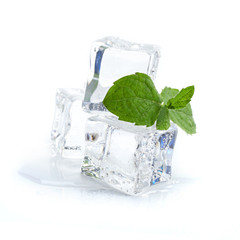 fresh mint and ice