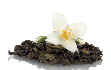 beautiful jasmine flower and dry green tea isolated on white