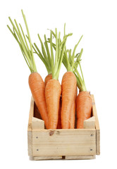 Carrots in crate isolated on white