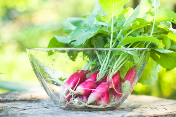 Rinsed radish in glass bowl