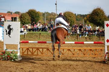 saut d'obstacles et public