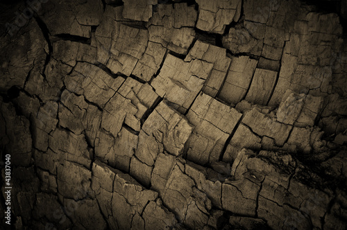 Old grunge and cracked wooden background
