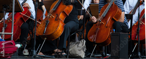 Orchestra - 43839684