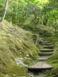 Fototapeten,gärten,grün,meditation,ruhig
