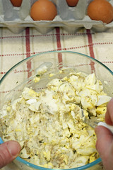 Mixing Egg Salad Ingredients