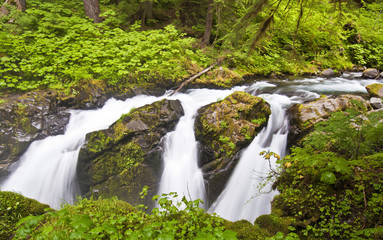 The sol duc waterfall at Olympic National Park