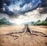Fototapeta duży - nacięcie - Dziki pejzaż
