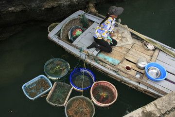 Hawker in a boat, Halong bay, Vietnam