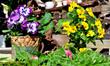 Romantischer Garten Terrasse Dekoration