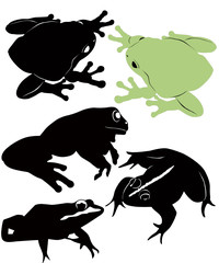 frog vector isolated on white background