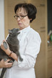 Cat snarling on a woman