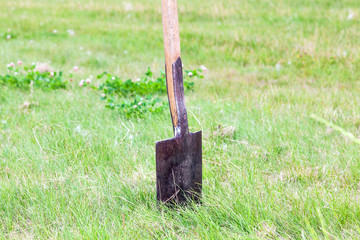 Spade into the lawn